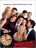 American Pie: El reencuentro