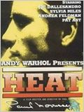 Heat (Caliente)