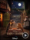 Foto : Lady And The Tramp VO (2)