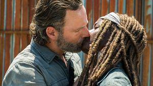 ¿Reencuentro entre Rick y Michonne? El jefe de