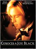 &#191;Conoces a Joe Black?