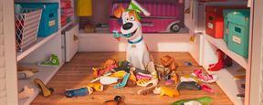 'Mascotas': Los animales vuelven a la carga en el spot de la Super Bowl