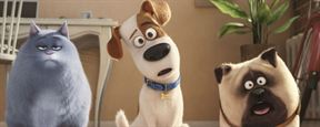 'Mascotas' permanece como número 1 en España durante su tercer fin de semana