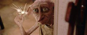 Los fans de 'Harry Potter' crean una réplica de la tumba de Dobby