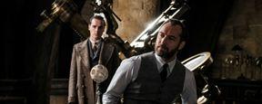 ¿'Animales fantásticos 2' plantea un agujero de guion en la historia de Albus Dumbledore?