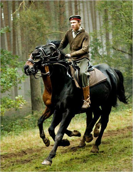 War Horse (Caballo de batalla) : Foto David Kross