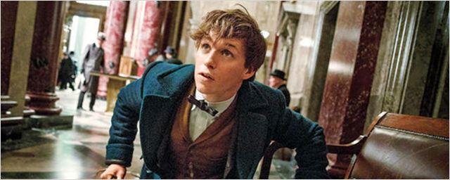 'Animales Fantásticos y dónde encontrarlos': Conoce a los personajes principales del 'spin-off' de 'Harry Potter'